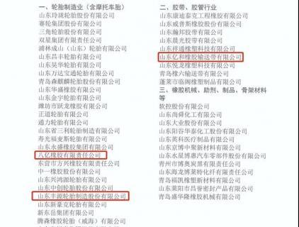 【好消息】公司再次入围江西省橡胶行业综合实力50强企业名单